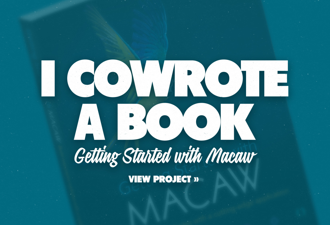 Macaw-Book-slide