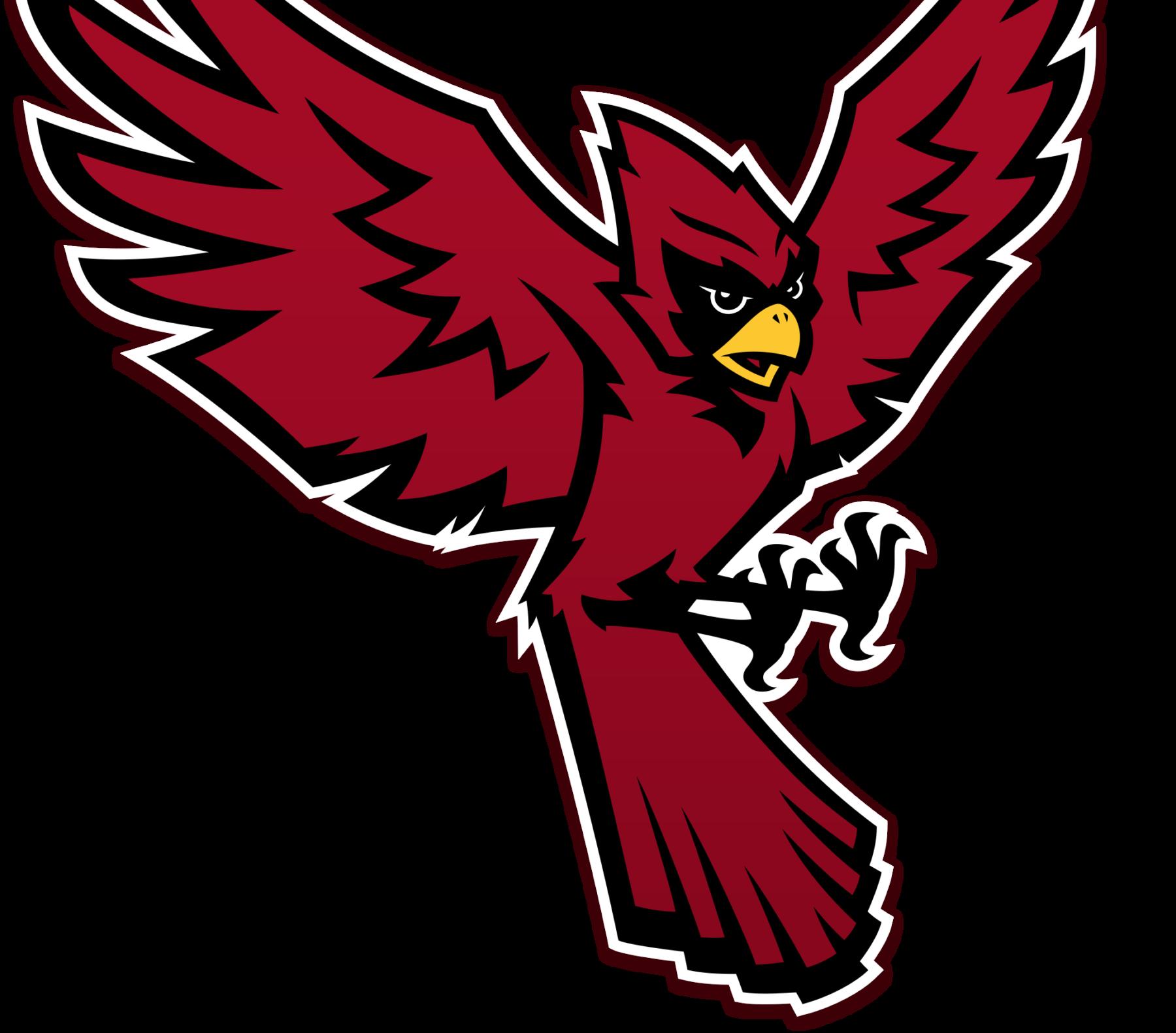 Raider Bird Full Body